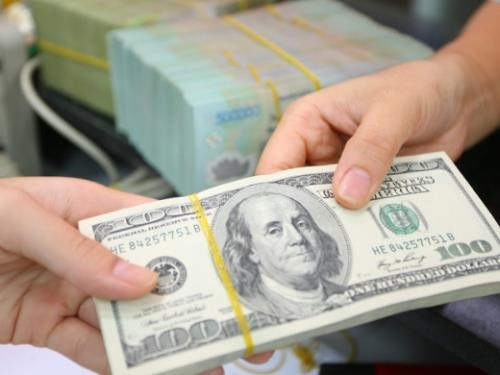 Reference exchange rate revised down on May 17 hinh anh 1