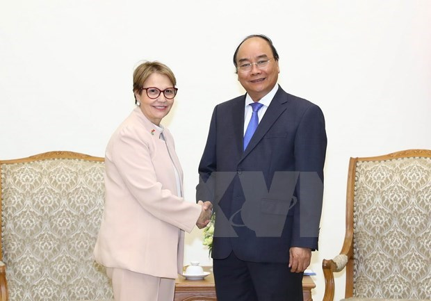 Prime Minister asks Brazil to open market wider for Vietnam's farm produce hinh anh 1