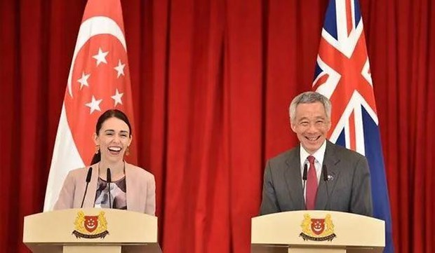 Singapore upgrade ties, promotes trade cooperation with New Zealand hinh anh 1