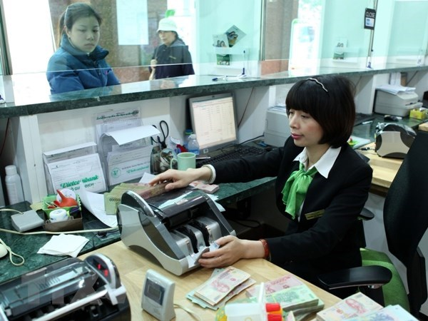 Moderate credit growth positive for Vietnam's economy hinh anh 1