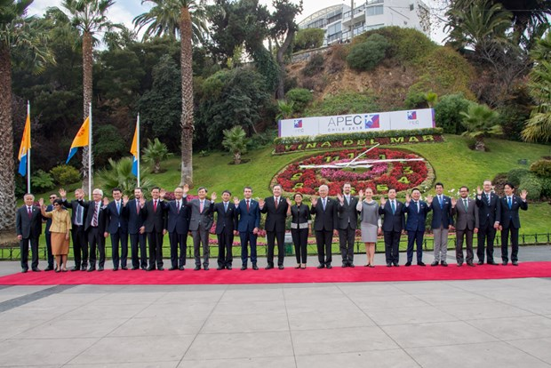 APEC economies vow support for free trade hinh anh 1