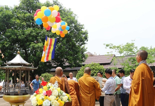Vietnamese in Laos celebrate the Buddha's 2563rd birthday hinh anh 1