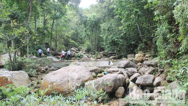 Bac Giang strives to preserve biodiversity in Tay Yen Tu hinh anh 1