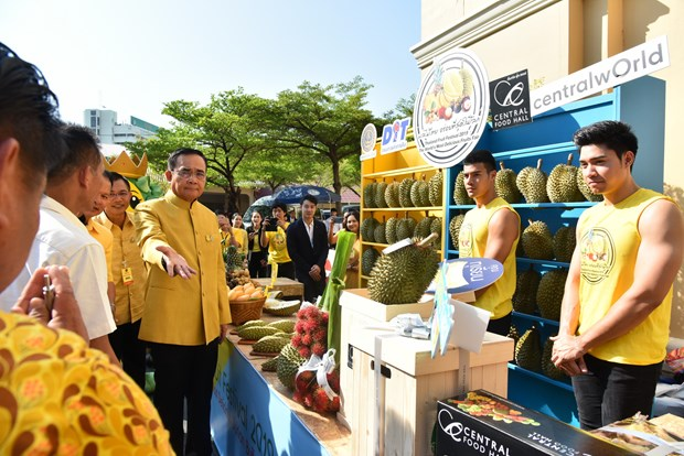 PM Prayut promotes Thailand Fruit Festival 2019 hinh anh 1