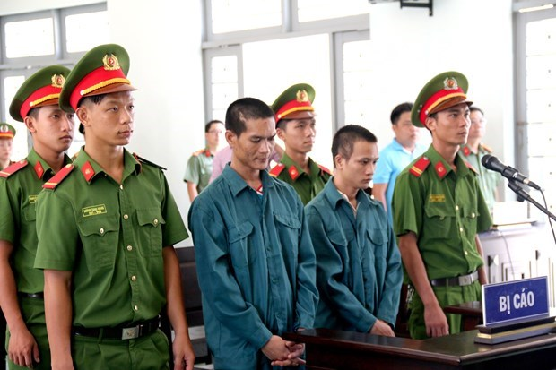 Binh Thuan: two jailed for destruction of assets hinh anh 1