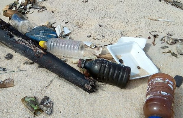 Seminar discusses contents of ocean plastic waste management hinh anh 1