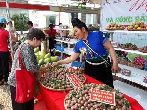 Son La's agricultural products promoted in Hanoi hinh anh 1