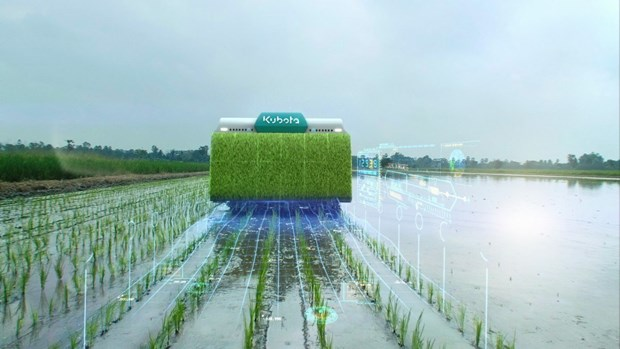 Thailand: Campaign launched to reduce greenhouse gas emissions from rice farming hinh anh 1
