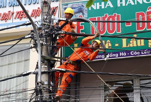 Government Inspectorate to probe power price hike hinh anh 1