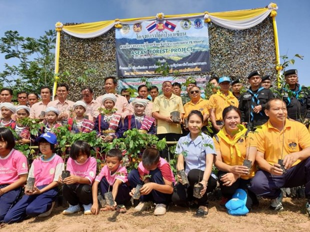 Thailand-Laos forest planting activity held hinh anh 1