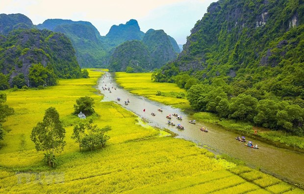 Vietnam to introduce tourism in RoK in late June hinh anh 1