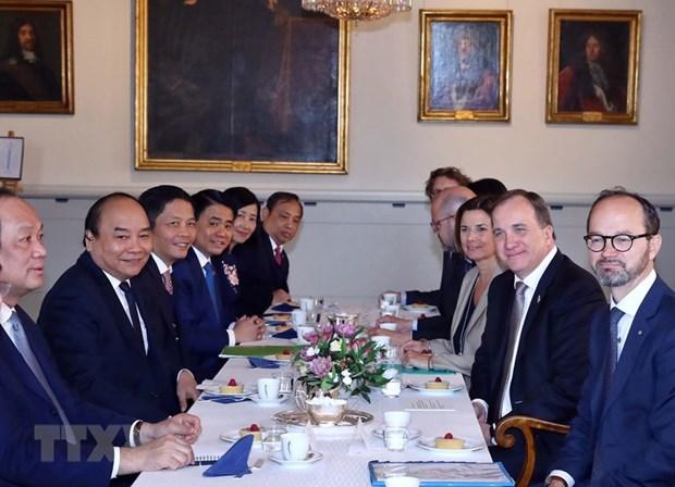 Vietnamese, Swedish PMs hold talks hinh anh 1