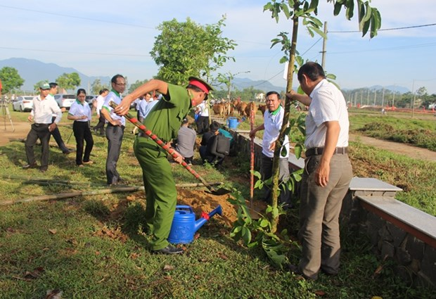 Practical activities responding to World Environment Day in Da Nang hinh anh 1