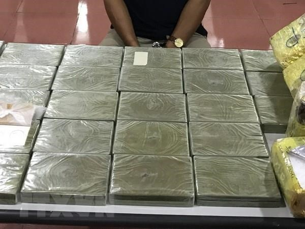Deputy PM applauds forces for busting big drug ring in Long An hinh anh 1