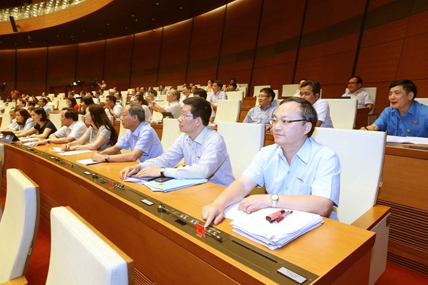 Legislature to conduct supreme supervision of child abuse control in 2020 hinh anh 1