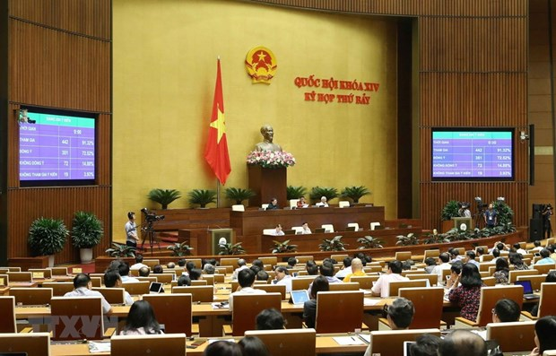 Various issues discussed in 11th working day of 14th NA's 7th session hinh anh 1