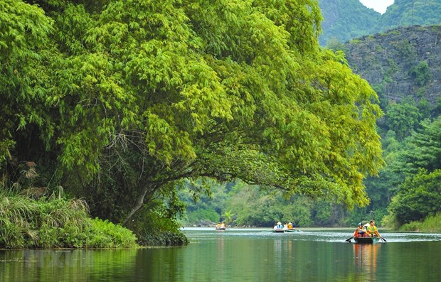 Vietnam – rising star in tourism sector: Malaysian newspaper hinh anh 1