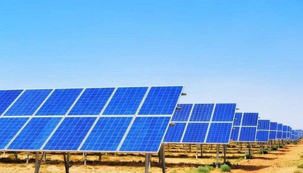 Indian company commissions solar plant in Vietnam hinh anh 1