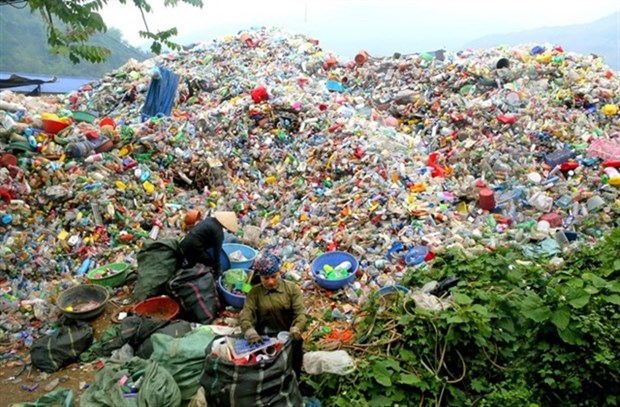 New plastic waste policies urgently needed: experts hinh anh 1