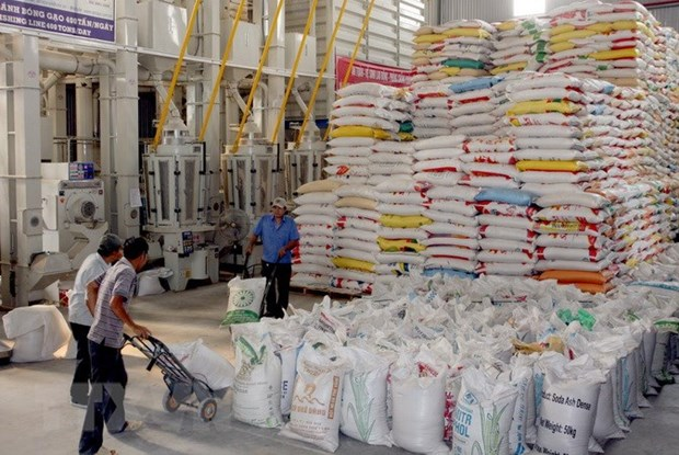 Vietnam's five-month rice exports drop hinh anh 1