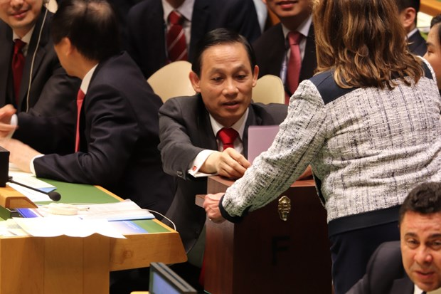 UN General Assembly casts votes for UNSC non-permanent seats hinh anh 1