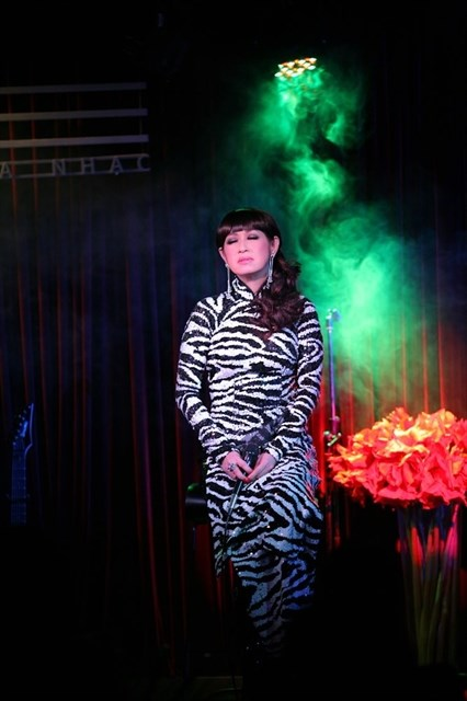 Vietnamese-American pop star Y Lan performs in HCM City hinh anh 1