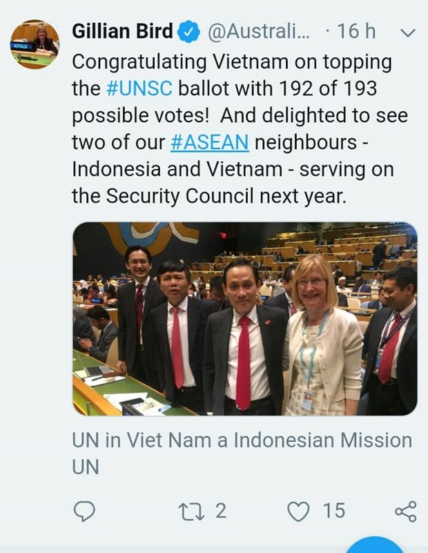 Countries congratulate Vietnam on winning election to UNSC hinh anh 2