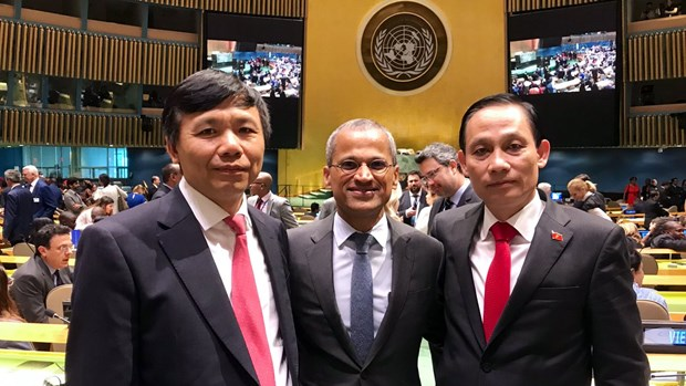 Countries congratulate Vietnam on winning election to UNSC hinh anh 1