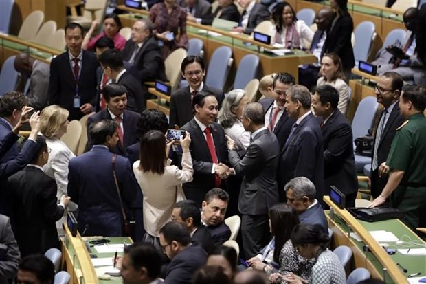 UNSC seat enables Vietnam to contribute more to global peace hinh anh 1
