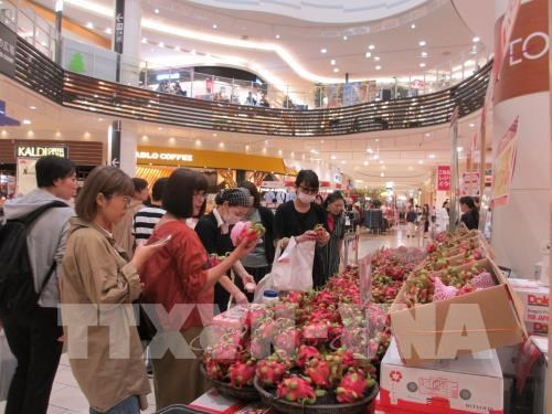 Vietnamese products seek to increase presence in Japanese market hinh anh 1