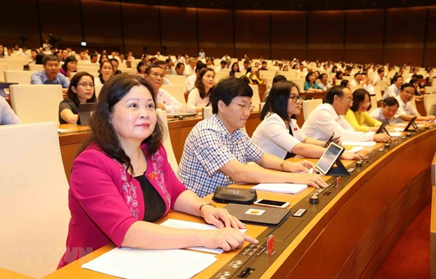NA deputies debate laws on government organisation hinh anh 1