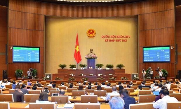NA deputies to debate two bills on June 11 hinh anh 1