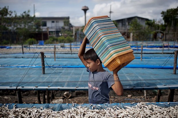 Thailand marks World Day against Child Labour hinh anh 1