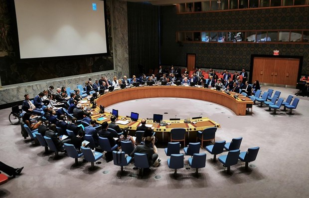 Vietnam well positioned to fulfil role in UN Security Council: veteran diplomat hinh anh 1