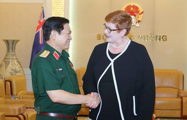 Vietnam is an important partner of Australia, says top diplomat hinh anh 1