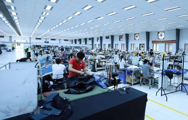 Vietnam's textile industry strives to find new markets hinh anh 1
