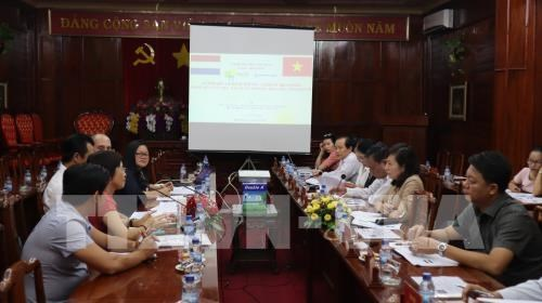Netherlands eyes cashew industry in Binh Phuoc hinh anh 1