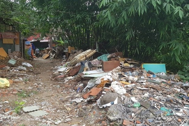 Illegal dumping resumes along Red River hinh anh 1