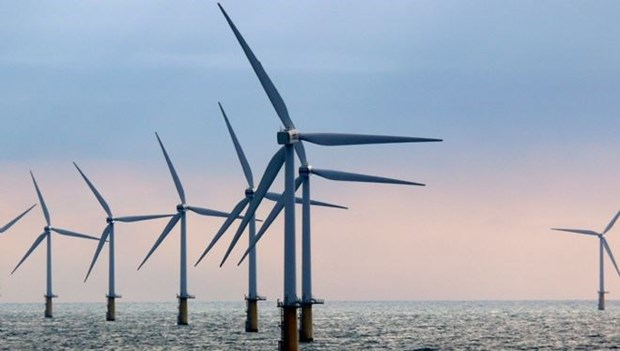 Investor permitted to start survey for giant offshore wind power farm hinh anh 1