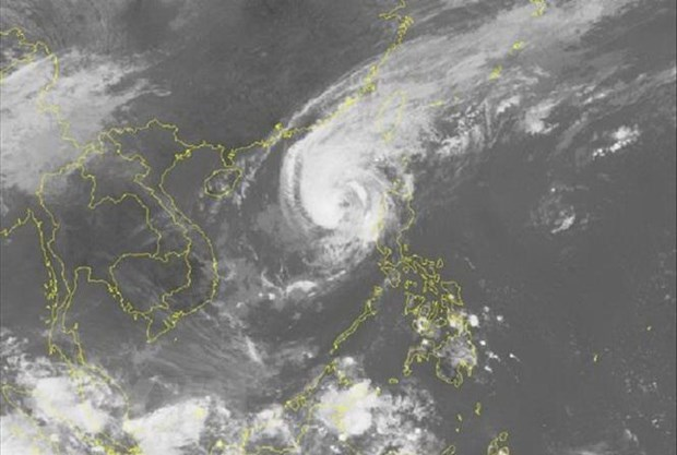 About five storms to hit mainland from July – December hinh anh 1