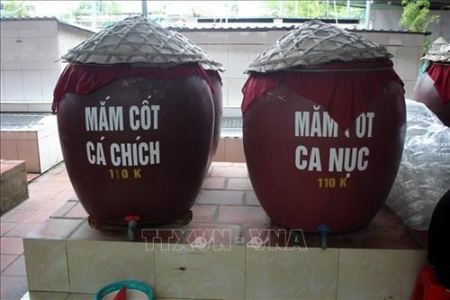 Fish sauce making brings prosperity to Thanh Hoa province hinh anh 1