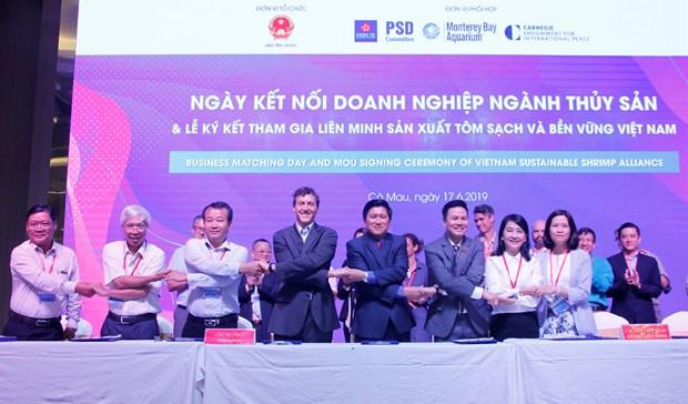 Vietnam Sustainable Shrimp Alliance established hinh anh 1