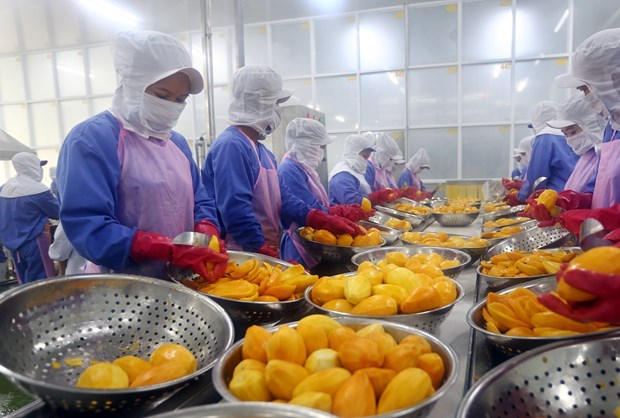 Vietnamese firms urged to make best use of CPTPP hinh anh 1