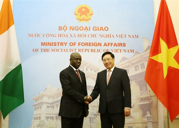 Vietnam values ties with Ivory Coast: Deputy PM hinh anh 1