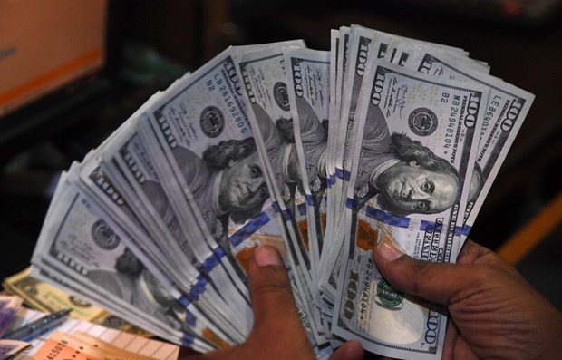 Reference exchange rate up by 5 VND on June 18 hinh anh 1