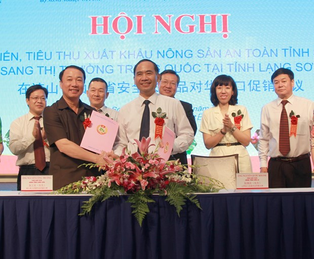 Son La boosts farm produce export to China hinh anh 1
