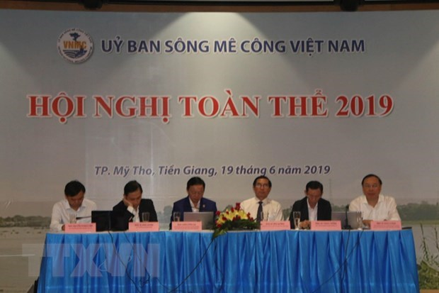 Vietnam Mekong River Commission holds first plenary meeting in 2019 hinh anh 1