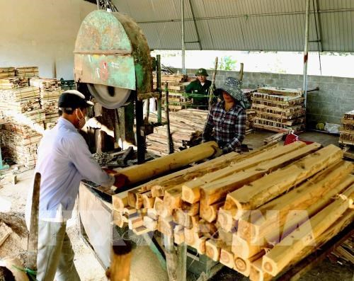Forestry product exports jump nearly 20 percent in year's first half hinh anh 1