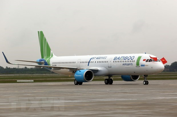 Bamboo Airways' fleet could reach 30 by 2023 hinh anh 1