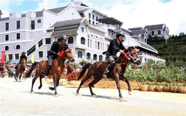 Horse racing in northwest resumed after decades hinh anh 1
